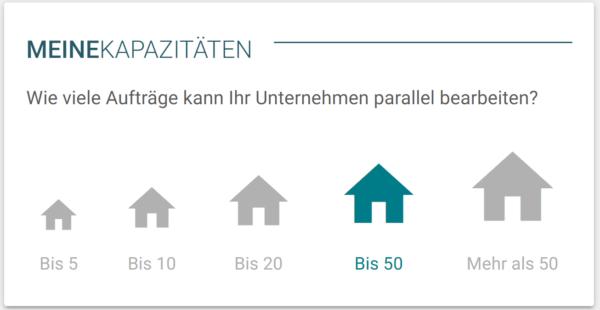 Screenshot Doozer Kapazitätenplanung